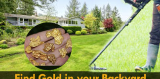 How to Find Gold in Your Backyard