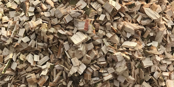 Places to Dumpster Dive - Wood Processing Plants